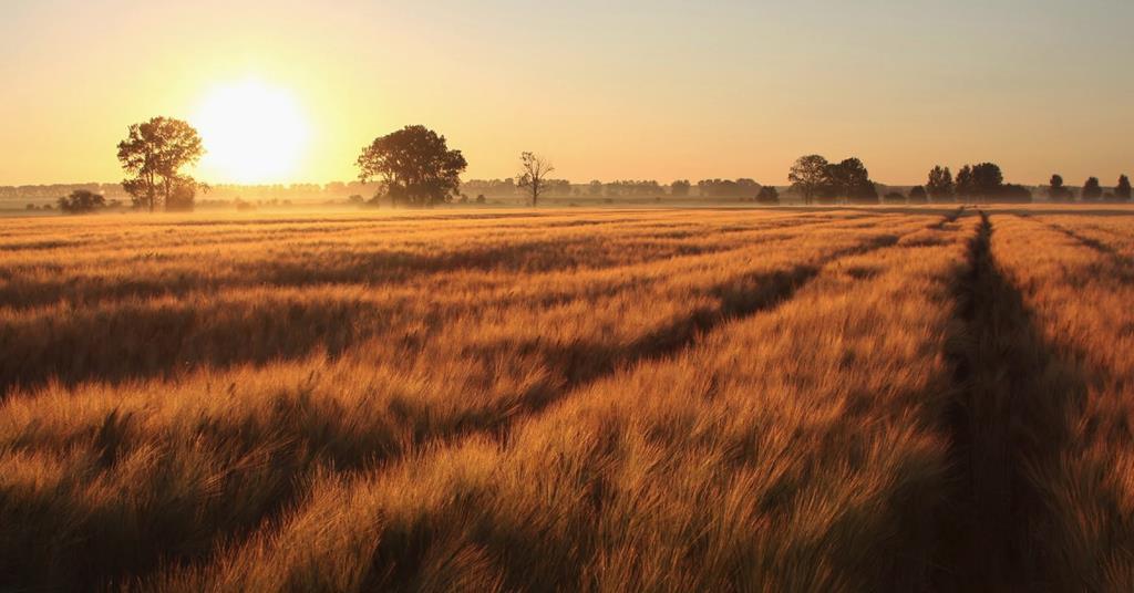 farmland investment services
