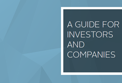 A guide for investors