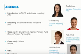 Meeting the TCFD recommendations in the 2018 PRI Reporting Framework