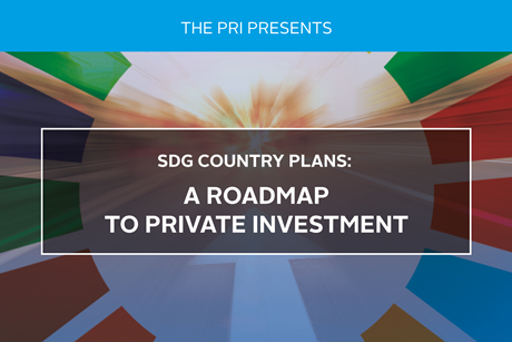 SDG_Country-plans